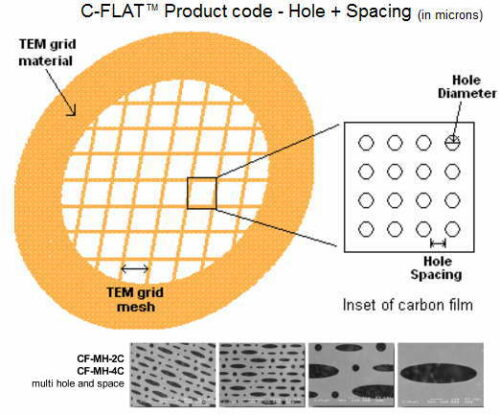C-FLAT Thick Multi-hole 400 Mesh