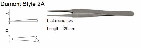 Dumont Tweezers Style 2A, 0302-2A-CO