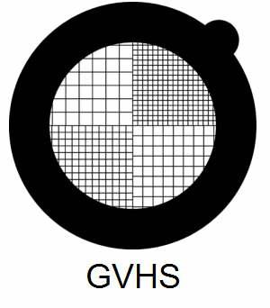 GVHS-G3, fine square mesh grids, Au, vial 50