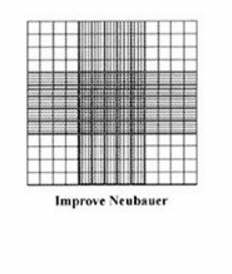 AGL4247-I, Improved Neubauer, Double cell