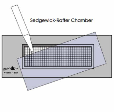 Sedgewick Rafter Counting Cell, Glass