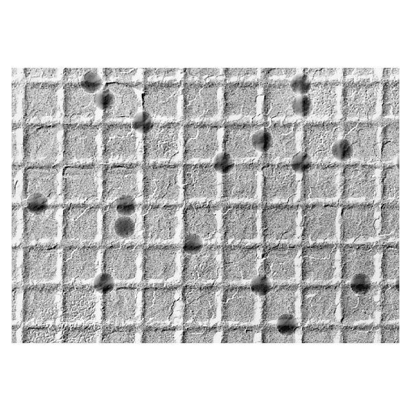 Diffraction grating replica with latex spheres